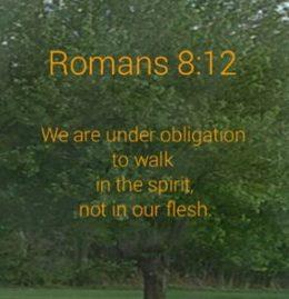 Romans 8:12